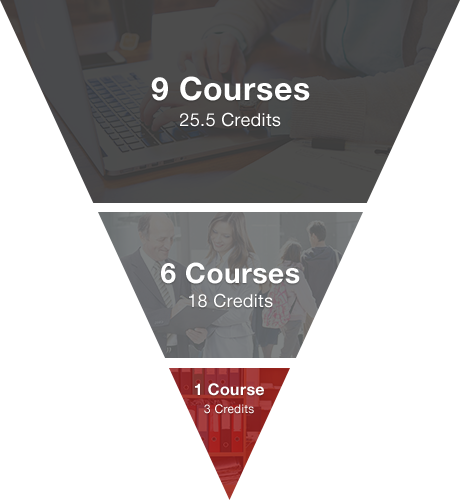 Integrated Foundation Courses - 9 Courses - 25.5 credits / Advanced Topics - 6 Courses - 18 credits / Strategic Management - 1 course - 3 credits