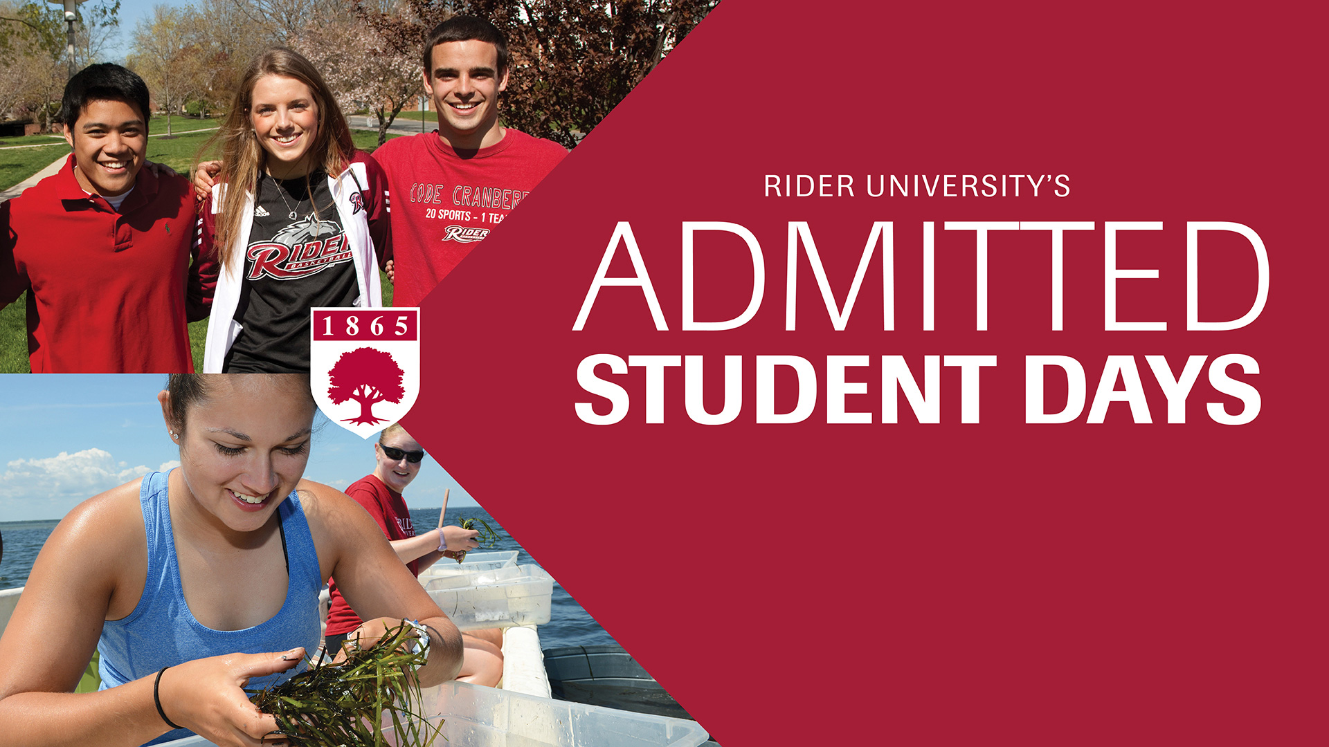 Information for newly accepted admitted students